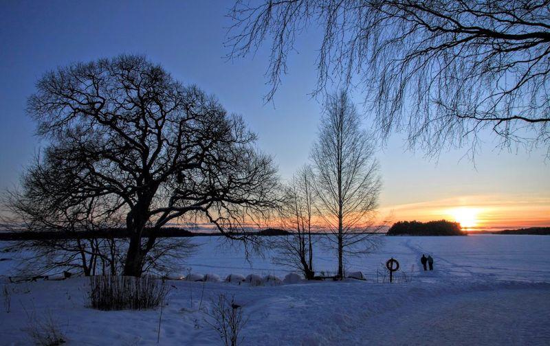 Walk on water Walk Water Frozen Lake Trees Winter Suomi Finland Tampere Pyhäjärvi Silhuette