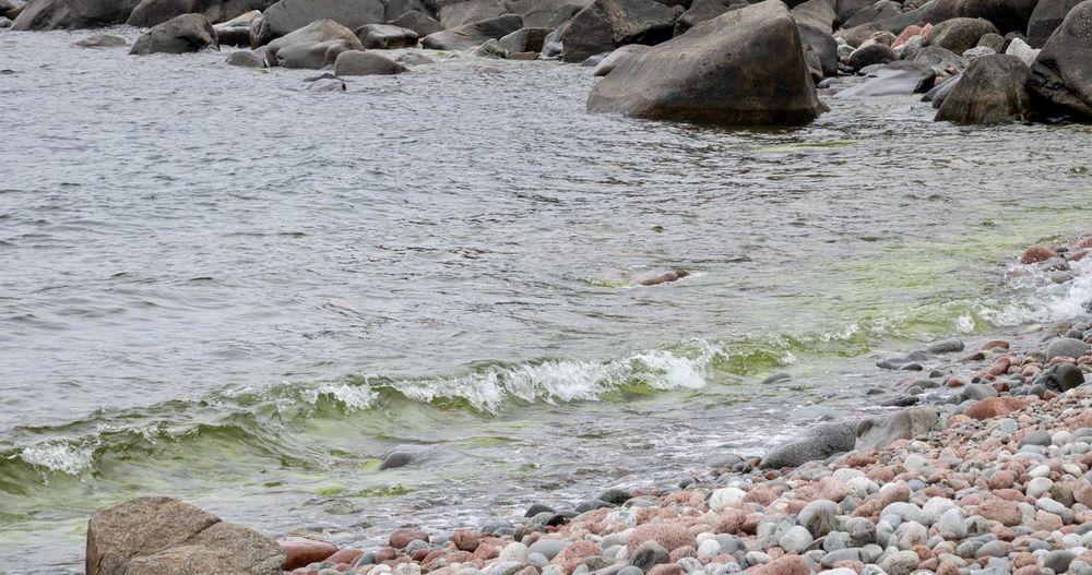 Emerald water Water Rock Sea Solid Rock - Object Motion Beauty In Nature
