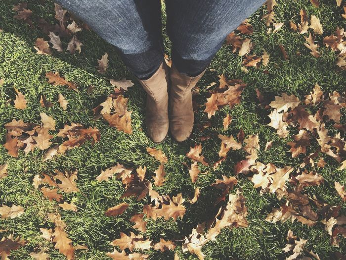 Low section of person standing on field surrounded by autumn leaves