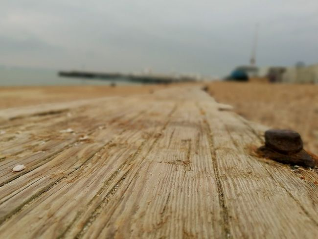 Outdoors Wood - Material Day No People Beach Scenics Close-up Washed Ashore Rural Scene Check This Out Plank