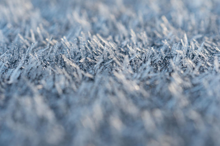 Thick frost this morning. Backgrounds Beauty In Nature Close-up Cold Temperature Day Frost Frost Frosty Frosty Mornings Frozen Frozen Full Frame Ice Crystal Maximum Closeness Nature No People Outdoors Selective Focus Snow Snowflake Weather Winter