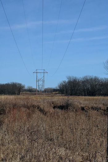 Visual Journal February 2017 Thayer County, Nebraska Cable Clear Sky Connection Day Electricity  Electricity Pylon Electricity Tower EyeEm Best Shots Field Fuel And Power Generation Landscape_Collection MidWest Nature Nebraska No People Oregon Trail Outdoors Photo Diary Power Line  Power Supply Rural America Sky Small Town Stories Tree Visual Journal