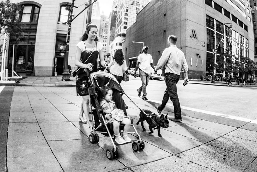 Casual Clothing Child City City Life Crossing Dog Family New York Place And People Street Trolley Walking Monochrome Photography Capturing Motion