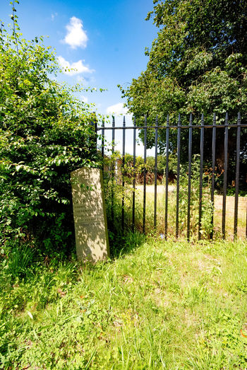 Historic stone boundary marker, by roadside, Colchester. Site of Lamb Cross and an ancient boundary marker. Marker Boundary Marker Of Temple Day Field Grass Green Color Growth Historic Nature No People Outdoors Railings Sky Stone Post Tree