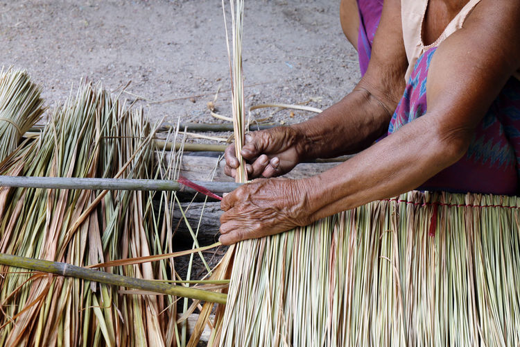 picture shows how to make a panel vetiver for hut roof, handwork crafts of panel vetiver for hut roof, straw roof hut Panel Adult Body Part Day Finger Hand Holding Human Body Part Human Hand Human Limb Hut Roof Hut Roof House Industry Men Midsection Nature Occupation One Person Outdoors Panel Vetiver Preparation  Real People Skill  Vetiver Weaving Working