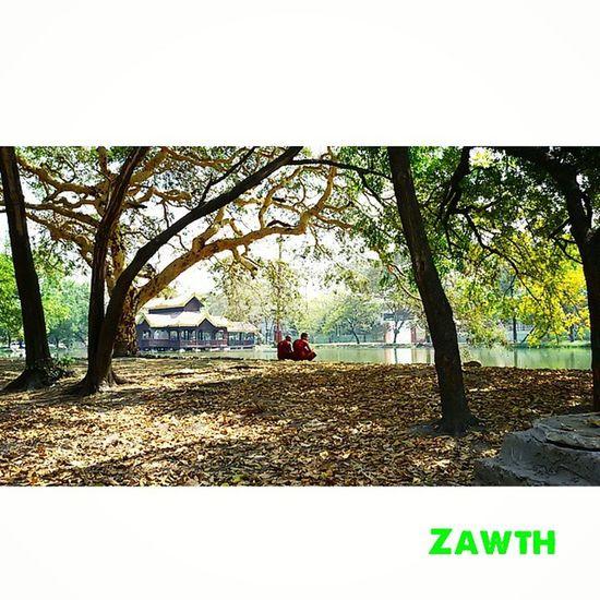 This is Myanmar. ကပွခဂကခr Monk  Mandalay Myanmar Myanmarphotos Burma Pond Temple Wood Kuthodaw Royalmerit Igersmandalay Igersmyanmar Vscomyanmar Ig_sharepoint Instagram Ig_worldphoto Igglobal Ig_great_shot_fla Ig_today Ig_globalclub Ig_great_shot Bsn_reflection Bsn_features Bsn_mobile Mobilephotography ZawTH vscodaily Made with @nocrop_rc rcnocrop