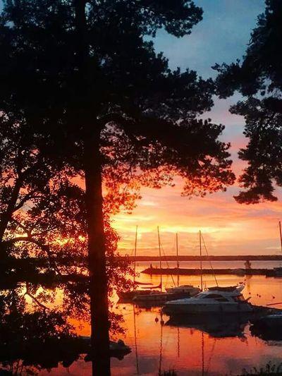Sunrise From My