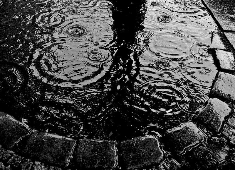 Black & White Monochrome Streetphoto_bw Water Collection  stone, tree, rain...