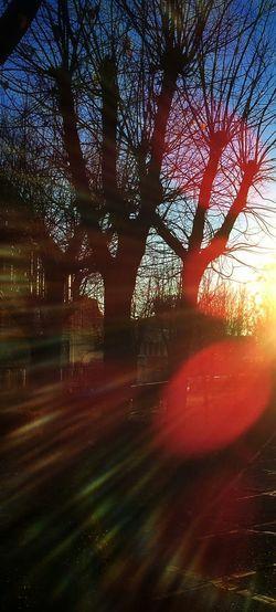 Por La Tarde Contraluz Navidad Sunset Esto Es Andalucía Sol
