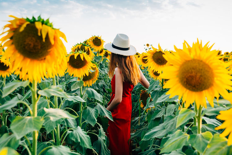 Woman standing on sunflower field against sky