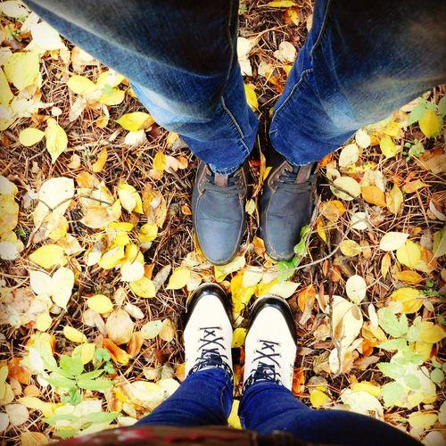 гуляем балатовский лес осень