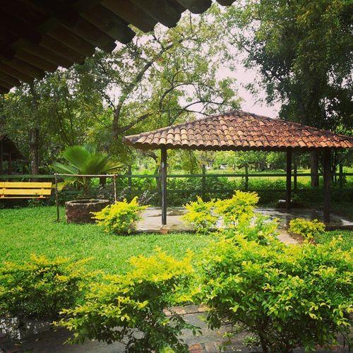 Lugar lindo, e de boas Energias Positivas ! ✌????☺
