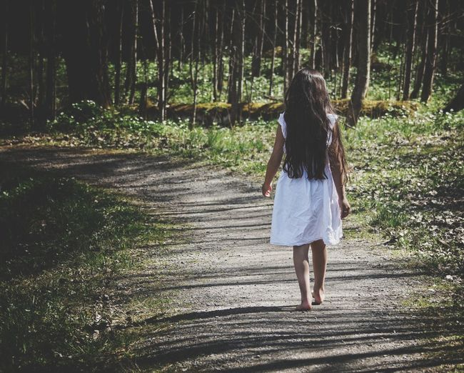 Rear View Of Girl Walking On Footpath In Forest