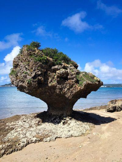 Okinawa Rock