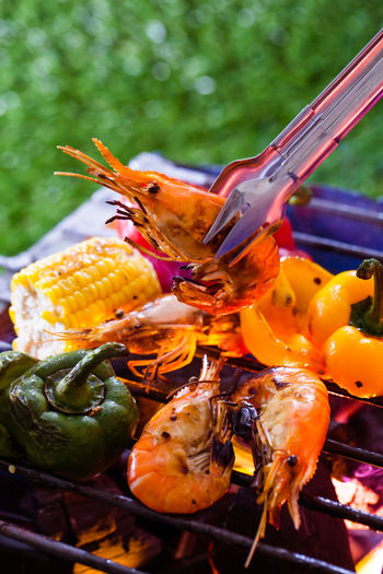 Close-up of insect on barbecue