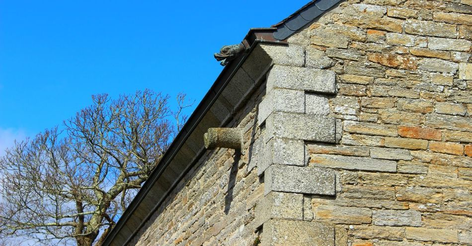 Architecture Bretagne Building Exterior Built Structure Clear Sky Close-up Concarneau Day Gargouille Gargoyles History Low Angle View Nature No People Outdoors Sky Tree