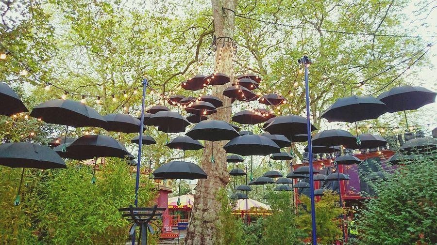 Umbrella Umbrellas Lights Mary Poppins