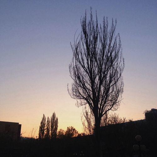 Sun Set Vscocam