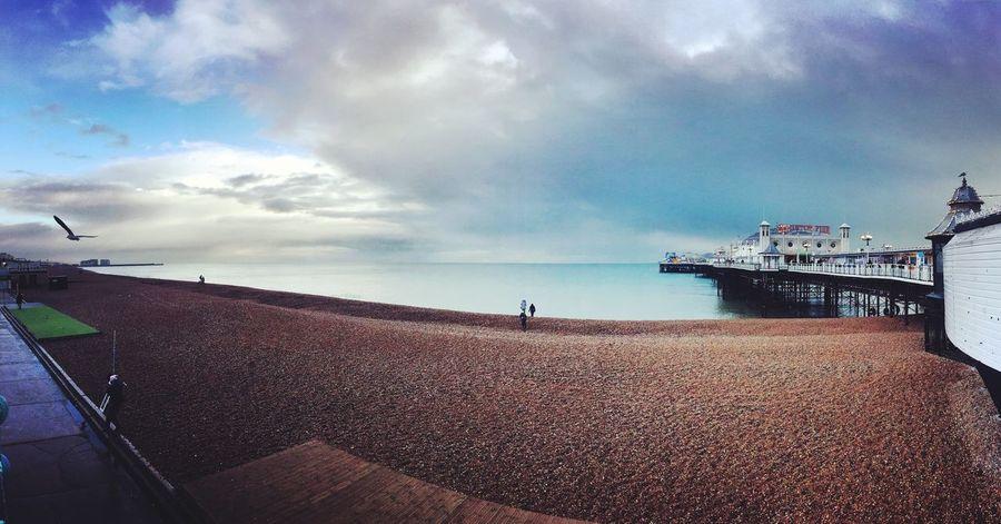 Brighton Pier in winter First Eyeem Photo Brighton Beach Uk England Waterfront Brighton Beach Brighton Pier Seagull
