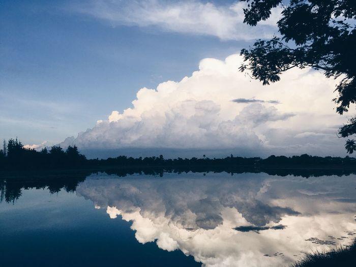 -reflection-