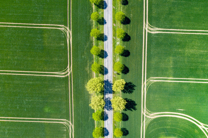 aerial view of fields with tractor tracks and a road in the middle Green Color No People Backgrounds Grass Day Outdoors Plant Pattern Full Frame Nature Environment Agriculture Growth In A Row Aerial View Sport Landscape Metal Beauty In Nature Drone  Dronephotography