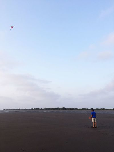 Kites on the beach Sky Beach Sea Land Real People Water Scenics - Nature Beauty In Nature Transportation Nature Flying Cloud - Sky Day Mode Of Transportation Men Full Length Lifestyles Horizon Over Water Air Vehicle People