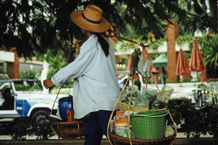 A woman carrying her shop on her back - Pataya, Thailand People Real People Food Tree Rear View Day Outdoors TukTuk Hat Transportation Basket Retail  Freshness Vegetable Healthy Eating Pataya Panama Hat One Person Casual Clothing Focus On Foreground Green Bucket A Taste Of Thailand Bicycletrde Business Stories