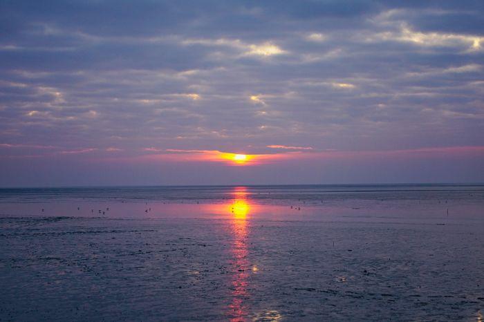 Sky Sunset Scenics - Nature Sea