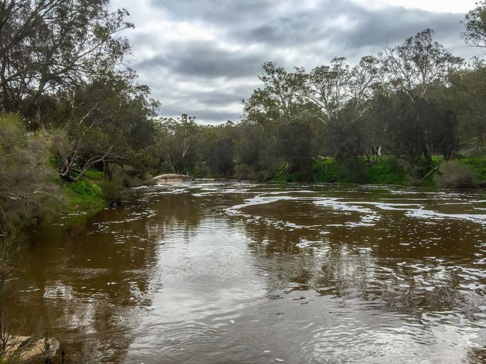 Stormy River View Tranquil Scene Peaceful Trees Lush Swan Valley  Overcast Australia Outdoors Landscape Riverbank Western Australia Water Swan River Nature Sky River Cloudy Stormy Weather Calm Water