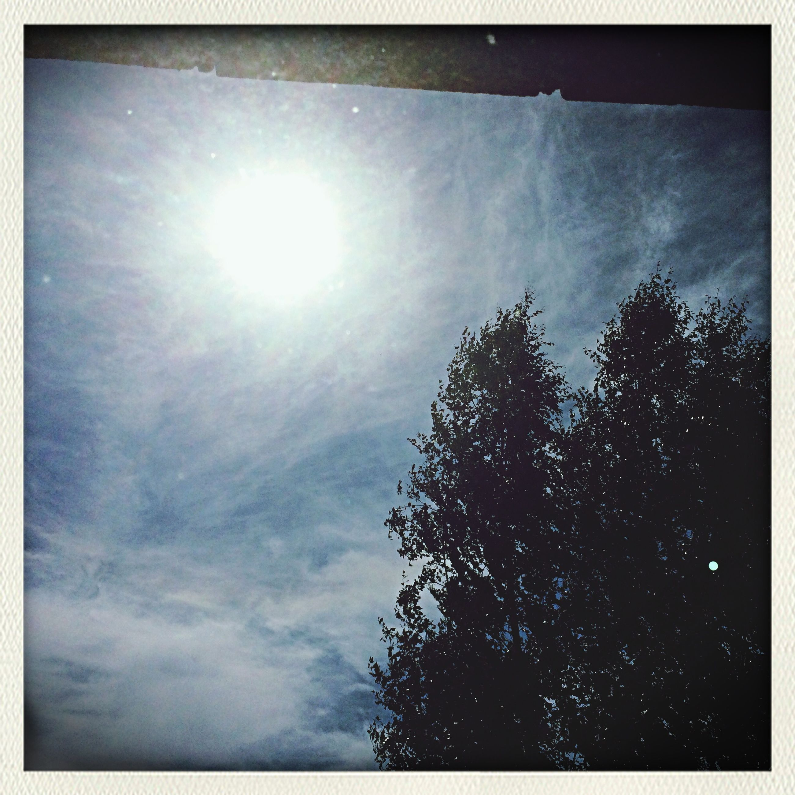 low angle view, sun, sky, sunbeam, transfer print, tree, sunlight, auto post production filter, lens flare, silhouette, nature, beauty in nature, tranquility, cloud - sky, day, bright, growth, outdoors, no people, sunny