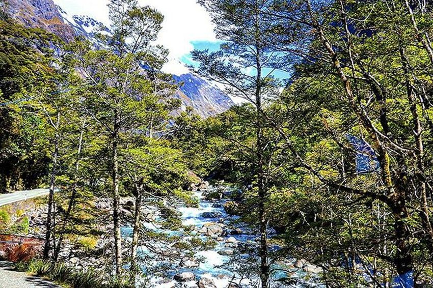 On route to Milford Sound. Queenstownlive Canon Canon760D Kiwi_photos NZ Nzmustdo