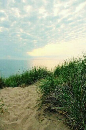 Beach Marram Grass Sand Sea Nature Tranquil Scene Water Tranquility Grass Horizon Over Water Scenics Cloud - Sky Beauty In Nature Sky Sand Dune Outdoors Growth No People Day Travel Destinations