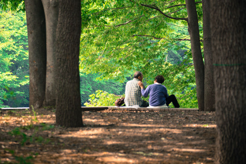 Rear view of couple sitting on bench