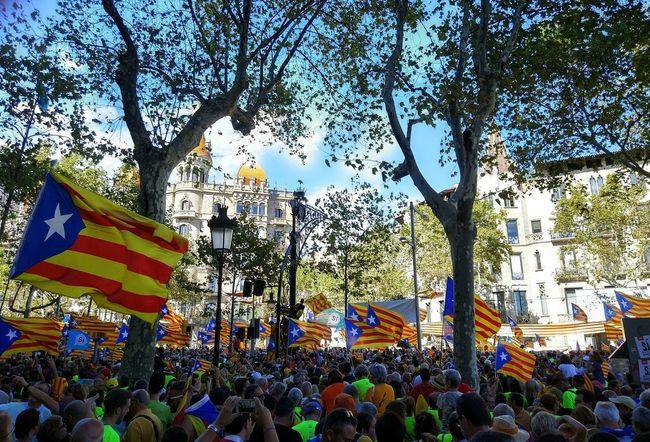 Passeig de Gràcia, Barcelona 11S 11setembre Barcelona Catalonia Catalunya Diada Estelada Passeig De Gràcia
