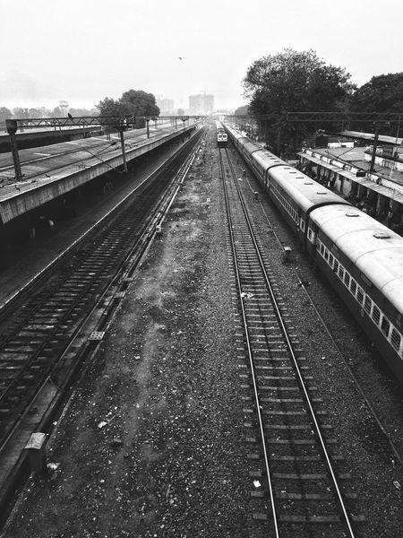 Journey Ahead Tranquility Tree Streetphotography Street India Rail Rail Transportation Railroad Track Railroad Track Track Infinity Train Journey Photography Shot Return Monsoon Winter