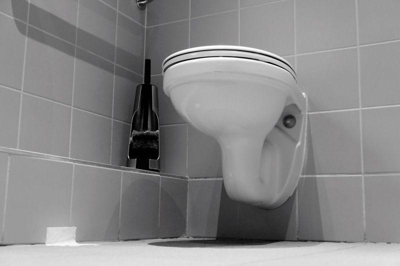 Domestic Bathroom Bathroom Hygiene Indoors  Toilet Bowl Toilet Urgency Convenience Toilet Paper No People Domestic Room Flushing Toilet