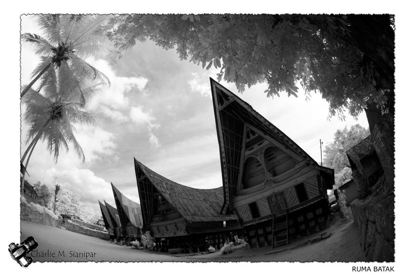 Traditional Batak's houses at Simanindo, Samosir, North Sumatra, with DSLR infrared camera. Batak  Architecture Batak Culture Batak Toba Bataknese Building Building Exterior Built Structure