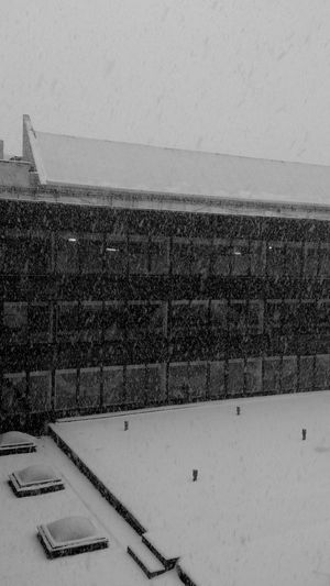 Snow Blackandwhite Winter