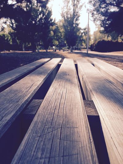 Surface Level Wood - Material Tranquil Scene Day Tranquility Long Wood Paneling No People People And Places Scenics