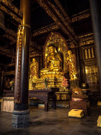 Low angle shot of a golden buddha statue. Buddha China Beauty Travel Photography Buddha Statue Buddhism China Chinese Culture Gold Colored History Illuminated Place Of Worship Religion Spirituality Statue Temple Travel Destinations