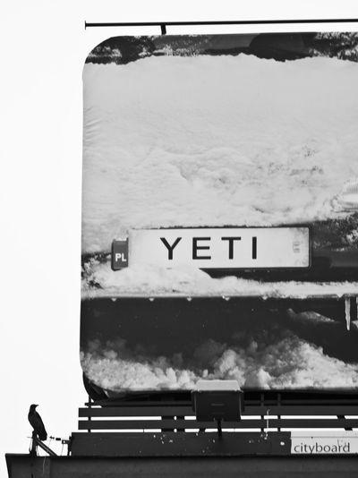#bilboard #bird #blackandwhite #City #contrasts #snow #Winter Day No People Outdoors Sky Transportation