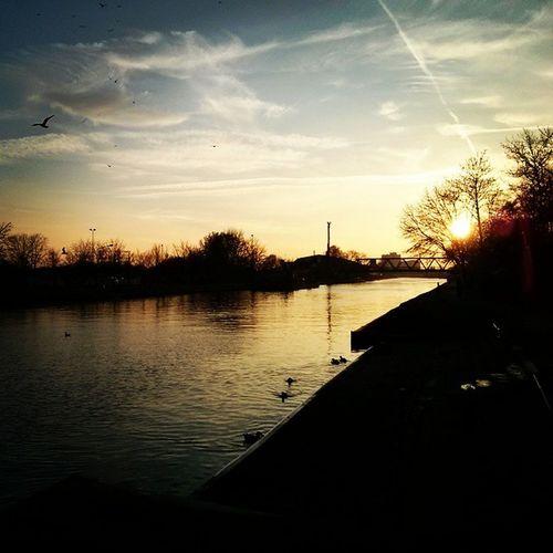 Abendstimmung am Kanal, schönen dritten Advent an euch alle! Münster Kanal Sundayevening Sundown Chilloutcanal