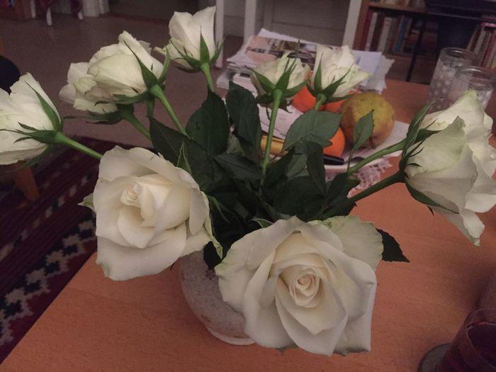 Witte rozen sieren mijn woonkamer First Eyeem Photo