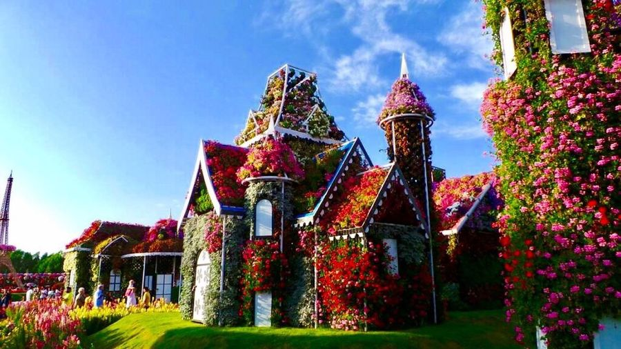 Flower House Built Structure Sky Architecture No People Outdoors Low Angle View Day Nature EyeEmNewHere Flowers Garden Dubai Miracle Garden