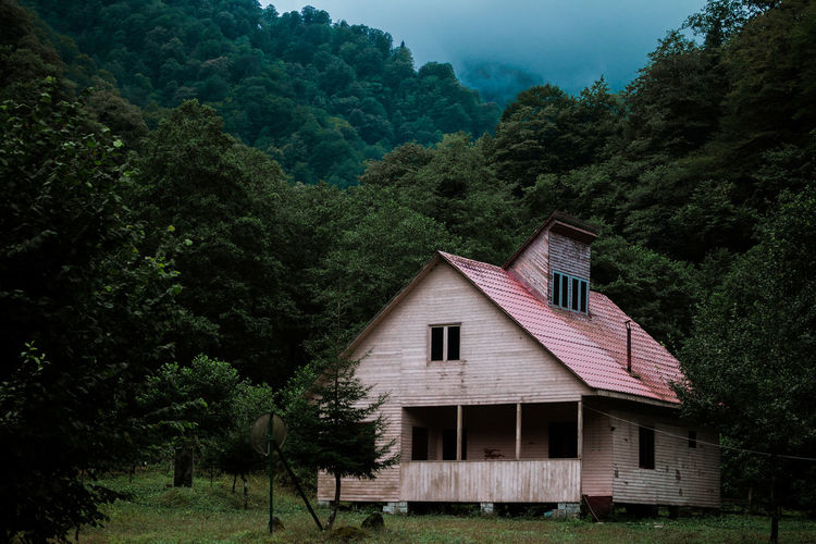 Cottage On Field In Forest