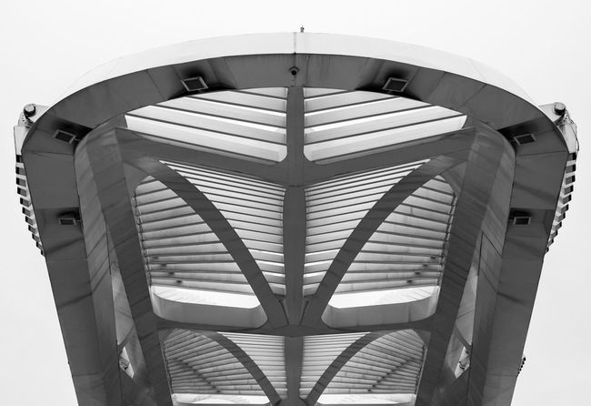 Built Structure Architecture No People Low Angle View Building Exterior Day Modern Indoors  Sky Close-up Architecture_collection Creative Creativity Rio De Janeiro Art Brazil Museum Architecture Low Angle View Shadows & Lights Black And White Black & White Light Shades Of Grey Outdoors