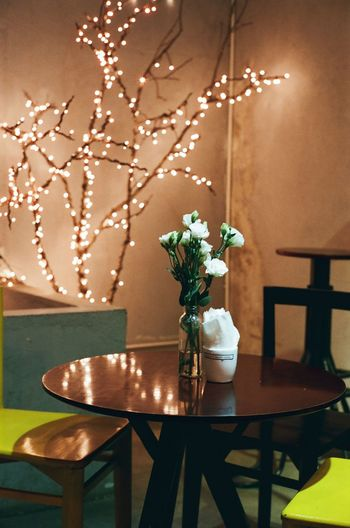 flowers Flower Home Showcase Interior Christmas Decoration Home Interior Shadow Table Chair Vase Side Table Close-up