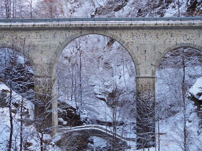 Snow covered bridge over bare trees during winter