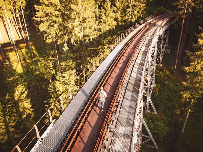 High angle view of railroad tracks amidst trees