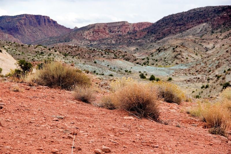 Scenic view of landscape at arches national park